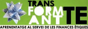 Banner1HD_TransFormant-TE
